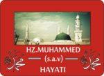 Hz muhammed s.a.v hayatı